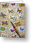 Mail Greeting Cards - Butterfly stamps and old document Greeting Card by Garry Gay