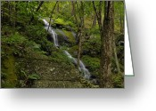 Buttermilk Greeting Cards - Buttermilk Falls - Tillmans Ravine Greeting Card by Stephen  Vecchiotti