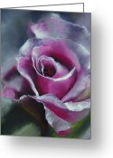 Hot Pink Custom Greeting Cards - By Any Other Name Greeting Card by Paul Autodore