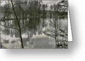Winter Trees Digital Art Greeting Cards - By The Lake Greeting Card by Jeff Breiman