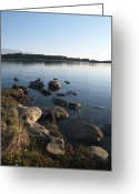 Johannessen Greeting Cards - By The Lake Greeting Card by Torfinn Johannessen