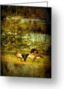 Goose Digital Art Greeting Cards - By The Little Tree - Lake Carasaljo Greeting Card by Angie McKenzie