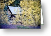 Fall Photographs Greeting Cards - Cabin Hideaway Greeting Card by James Bo Insogna
