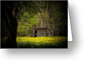Sheds Greeting Cards - Cabin in the Flowers Greeting Card by Joyce L Kimble