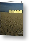 Beach Prints Greeting Cards - Cabins on a beach in Normandy Greeting Card by Bernard Jaubert