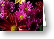 Blossom Greeting Cards - Cacophony of Color Greeting Card by Joe Kozlowski