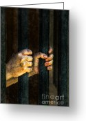 Regret Greeting Cards - Caged 2 Greeting Card by Jill Battaglia