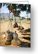 Hang Greeting Cards - Calabash gourd bottles in Mexico Greeting Card by Elena Elisseeva