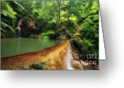 Volcanic Greeting Cards - Caldeira Velha - Azores islands Greeting Card by Gaspar Avila
