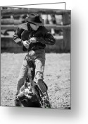 Calf Greeting Cards Greeting Cards - Calf Roper Greeting Card by Michelle Wrighton