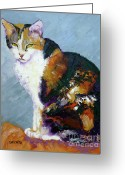 Canvas Drawings Greeting Cards - Calico Buddy Greeting Card by Susan A Becker