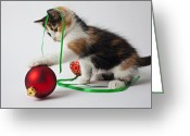 Pussy Greeting Cards - Calico kitten and Christmas ornaments Greeting Card by Garry Gay