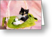 Calico Cat Greeting Cards - Calico Kitty in Basket Greeting Card by Jai Johnson