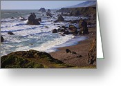 Wave Greeting Cards - California coast Sonoma Greeting Card by Garry Gay