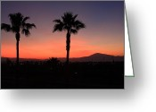 Sly Greeting Cards - California Dreamin Greeting Card by Lyle Hatch
