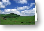 Featured Landscape Art Greeting Cards - California Hills with Cows Greeting Card by Kathy Yates
