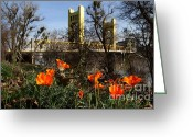 Sacramento River Greeting Cards - California Poppies With The Slightly Photographically Blurred Sacramento Tower Bridge In The Back Greeting Card by Wingsdomain Art and Photography