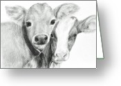 Livestock Drawings Greeting Cards - Calves Greeting Card by Meagan  Visser
