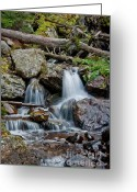 Wall Calendars Greeting Cards - Calypso Cascades Greeting Card by Brent Parks