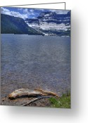 Cameron Greeting Cards - Cameron Lake Driftwood Greeting Card by Don Wolf