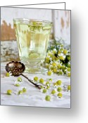 Indoors Greeting Cards - Camomille Tea Greeting Card by ©Tasty food and photography