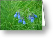 Plants Pyrography Greeting Cards - Can You Hear The Blue Bells Greeting Card by Bj Hodges