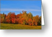 Colors Of Autumn Greeting Cards - Canada in Colors Greeting Card by Aimelle