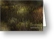 Loneliness Greeting Cards - Canadian Forest - The woods are lovely dark and deep Greeting Card by Christine Till