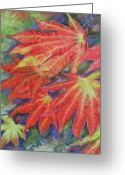 Red Leaves Pastels Greeting Cards - Canadien Autumn Greeting Card by Mona Davis