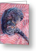 Gray Tabby Greeting Cards - Candy Cane Greeting Card by Kimberly Santini