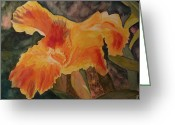 Canna Greeting Cards - Canna in morning light Greeting Card by Carol Marcus