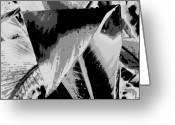 Canna Greeting Cards - Canna in Shades of Grey Greeting Card by Beth Akerman