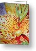 Canna Greeting Cards - Canna Indica Greeting Card by Jennie Smallenbroek
