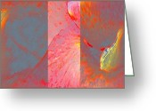 Canna Greeting Cards - Canna Lily Abstract Greeting Card by Gretchen Wrede