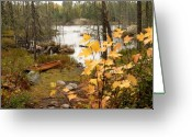 Maple Leaves Greeting Cards - Canoe at Little Bass Lake Greeting Card by Larry Ricker