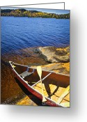 Paddles Greeting Cards - Canoe on shore Greeting Card by Elena Elisseeva