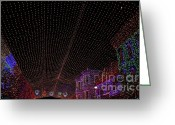 Ronnie Glover Greeting Cards - Canopy of Lights Greeting Card by Ronnie Glover