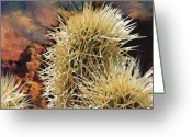 Arid Country Greeting Cards - Canyon Cactus Greeting Card by Bob Salo