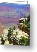 Buzzard Wings Greeting Cards - Canyon Portrait with Condor Greeting Card by Jeff Stein