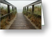 Walk Way Photo Greeting Cards - Cape Cod Greeting Card by Kelly Wade