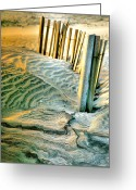 Sand Fences Photo Greeting Cards - Cape Hatteras Dunes  Greeting Card by Steven Ainsworth