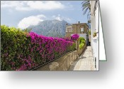 Photgraphy Greeting Cards - Capri Alleyway Greeting Card by George Oze