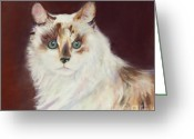 Pet Pastels Greeting Cards - Capturing Eyes Greeting Card by Pat Saunders-White