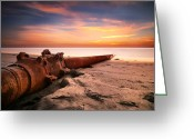 San Diego California Greeting Cards - Cardiff State Beach Sand Dredge Greeting Card by Larry Marshall