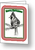 Carol Allen Anfinsen Greeting Cards - Cardinal Christmas Greeting Card by Carol Allen Anfinsen