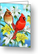 Feminine Greeting Cards - Cardinal Day Greeting Card by JQ Licensing