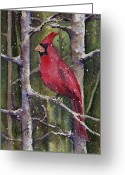 Red Greeting Cards - Cardinal Greeting Card by Sam Sidders