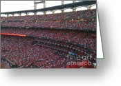 Cardinals World Series Greeting Cards - Cardinals Red Greeting Card by Barbara Plattenburg