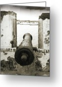 Puerto Rico Greeting Cards - Caribbean Cannon Greeting Card by Steven Sparks
