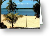 Florida Living Greeting Cards - Caribbean Canvas Greeting Card by Rene Triay